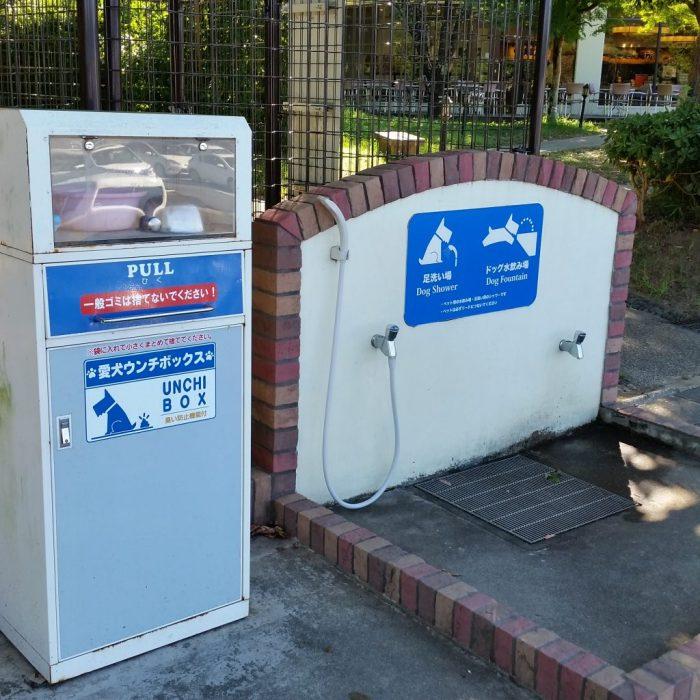 安濃サービスエリアの犬用水飲み場(鳥羽わんわんパラダイスホテルの道中)