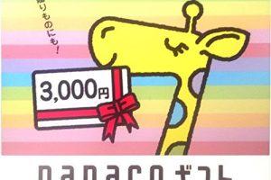 コンビニで買える人気電子ギフト券「nanacoギフト」