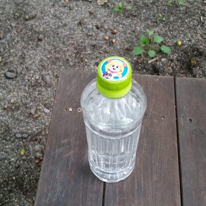 高山わんわんパラダイスホテルのワンコ用の水