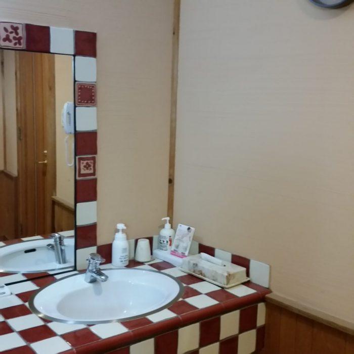 高山わんわんパラダイスホテルの露天風呂の洗面所